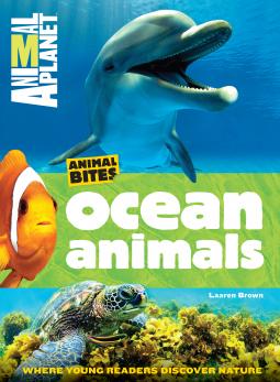 oceananimals
